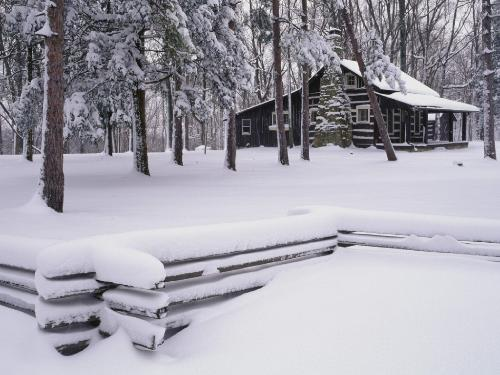 那年下雪的时候